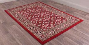 Traditional Poly Esta Red Polypropylene Rug