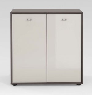 Wiemann Tokio 2 Door Dresser in Magnolia Glass and Havana with Silver Handle